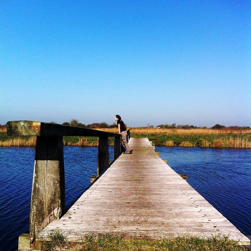 Abi on a bridge in Het Twiske