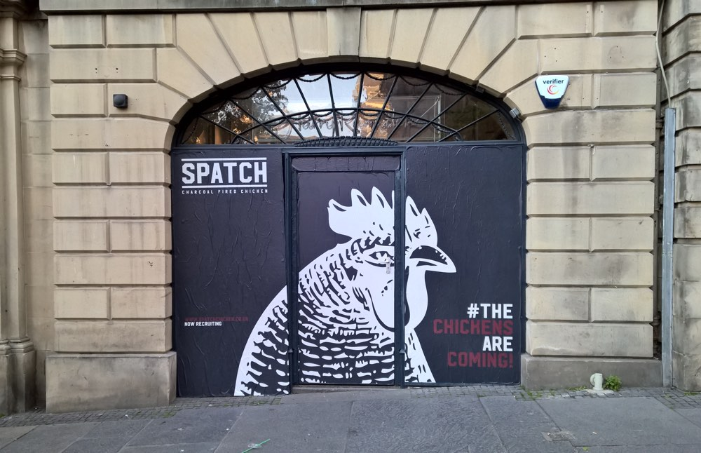 Spatch - the chickens are coming