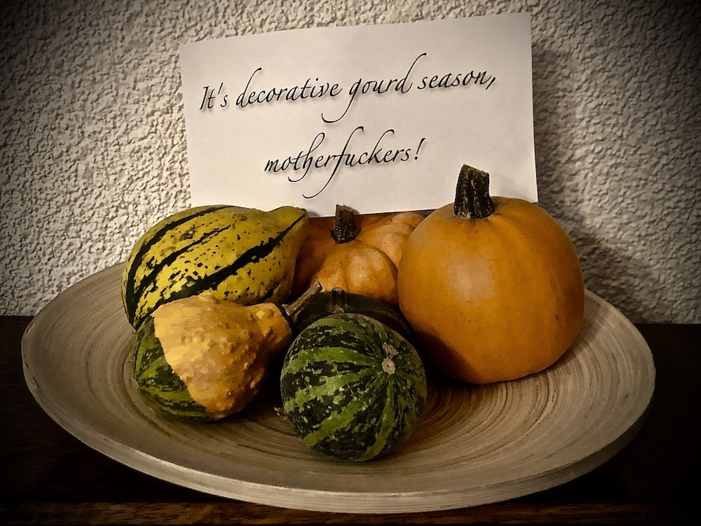 Some decorative gourds with a note saying, It's Decorative Gourd Season Motherfuckers! in fancy script