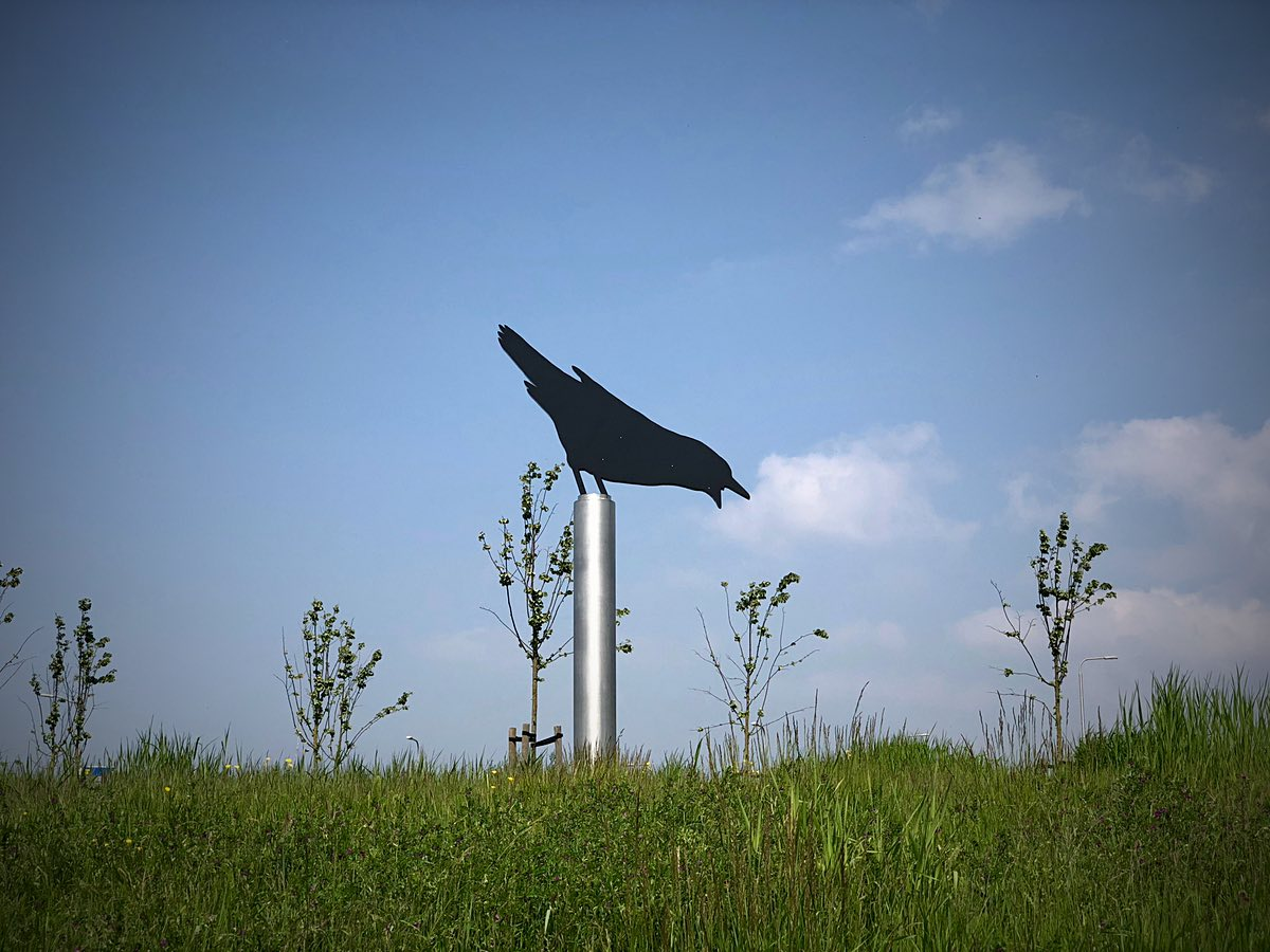 Crow weathervane Schoorl